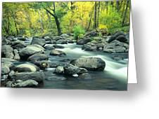 Stream In Cottonwood Canyon, Sedona Greeting Card