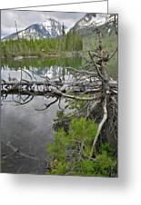 String Lake Reflection Greeting Card
