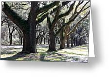 Strong Trees In The South Greeting Card