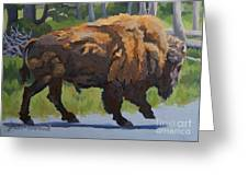 Strutting Along, Yellowstone Greeting Card by Erin Fickert-Rowland