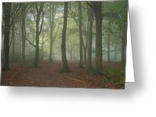 Stunning Colorful Moody Vibrant Autumn Fall Foggy Forest Landsca Greeting Card
