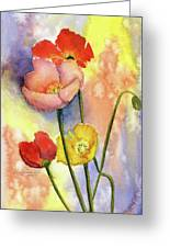 Summer Poppies Greeting Card