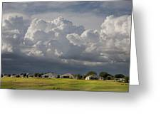 Summer Storm In Florida Greeting Card