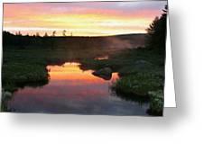 Summer Sunrise In Maine Greeting Card