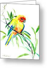 Sun Parakeet Greeting Card