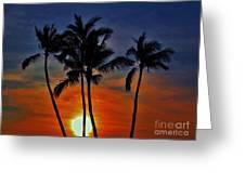 Sunlit Palms Greeting Card