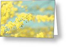 Sunny Blooms 2 Greeting Card