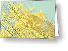 Sunny Blooms 3 Greeting Card