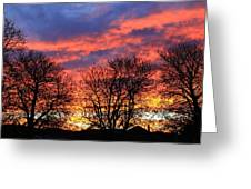 Sunset And Filigree Greeting Card