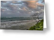 Sunset At Kapaa - Kauai Greeting Card