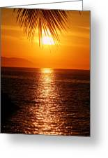 Sunset In The Frawn Greeting Card