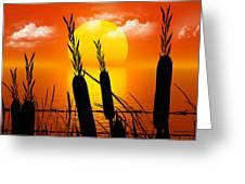 Sunset Lake Greeting Card by Robert Orinski