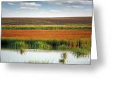 Swamp With Birds Landscape Autumn Season Greeting Card