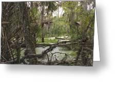 Swamped Greeting Card