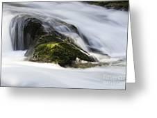 Sweet Creek Oregon 13 Greeting Card