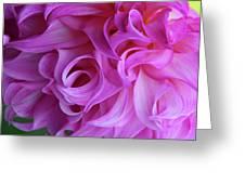 Swirls Of Romance Greeting Card