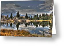 Teton Beaver Pond Greeting Card by David Armstrong