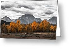 Teton Fall - Modern View Of Mt Moran In Grand Tetons Greeting Card