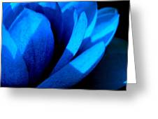 The Blue Lilly Greeting Card by Catherine Natalia  Roche