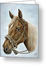 The Boss' Mount Greeting Card by Cathy Cleveland