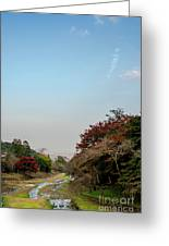 The Creek At The Yoro Waterfall In Gifu, Japan, November, 2016 Greeting Card