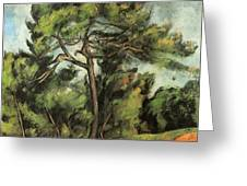 The Large Pine Greeting Card