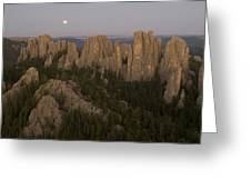 The Needles Protrude From Forests Greeting Card