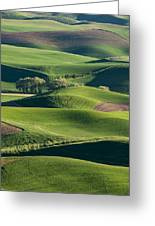 The Palouse #2 Greeting Card
