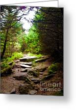 The Path To Righteousness Greeting Card