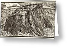 The Remains Greeting Card