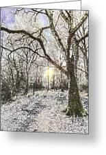 The Snow Forest Art Greeting Card