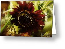 The Softness Of Autumn Greeting Card