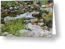 The Stream Greeting Card