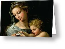 The Virgin Of The Rose Greeting Card
