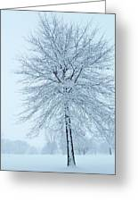 The Winter Tree  Greeting Card by Lori Frisch