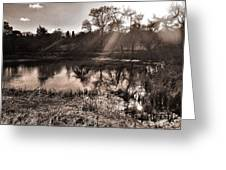 Thornton Reservoir, Leicestershire Greeting Card