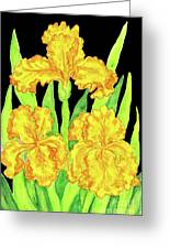 Three Yellow Irises, Painting Greeting Card