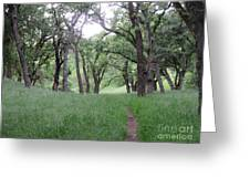 Through The Meadow Greeting Card