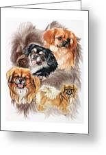 Tibetan Spaniel W/ghost Greeting Card