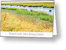 Tidal Creek Mud Flat At Low Tide Greeting Card