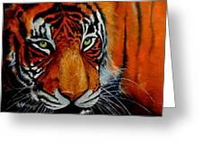 Tiger, Tiger Burning Bright... Greeting Card