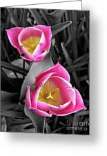 Tiptoe Through The Tulips Greeting Card