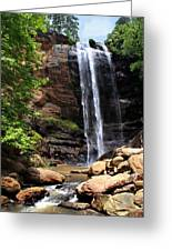 Toccoa Falls Greeting Card