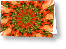 Tomato Kaleidoscope Greeting Card