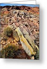 Tracks Of Color In Valley Of Fire Greeting Card