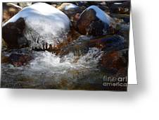 Trail To Tokopah Falls Greeting Card