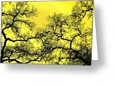 Tree Fantasy 18 Greeting Card