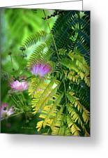 Tropical Eden Greeting Card