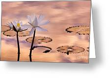 Tropical Lily Greeting Card