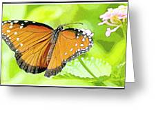 Tropical Queen Butterfly Framing Image Greeting Card